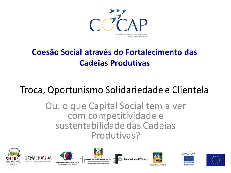 Coesão Social através do Fortalecimento das Cadeias Produtivas Troca, Oportunismo Solidariedade e Clientela