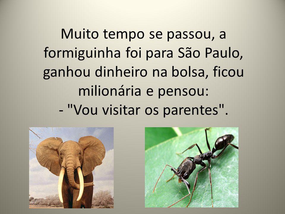 Muito tempo se passou, a formiguinha foi para São Paulo, ganhou dinheiro na bolsa, ficou milionária e pensou: - Vou visitar os parentes .