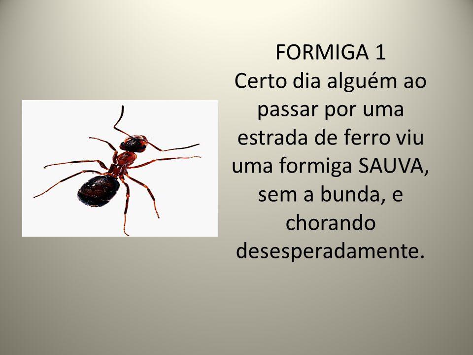 FORMIGA 1 Certo dia alguém ao passar por uma estrada de ferro viu uma formiga SAUVA, sem a bunda, e chorando desesperadamente.