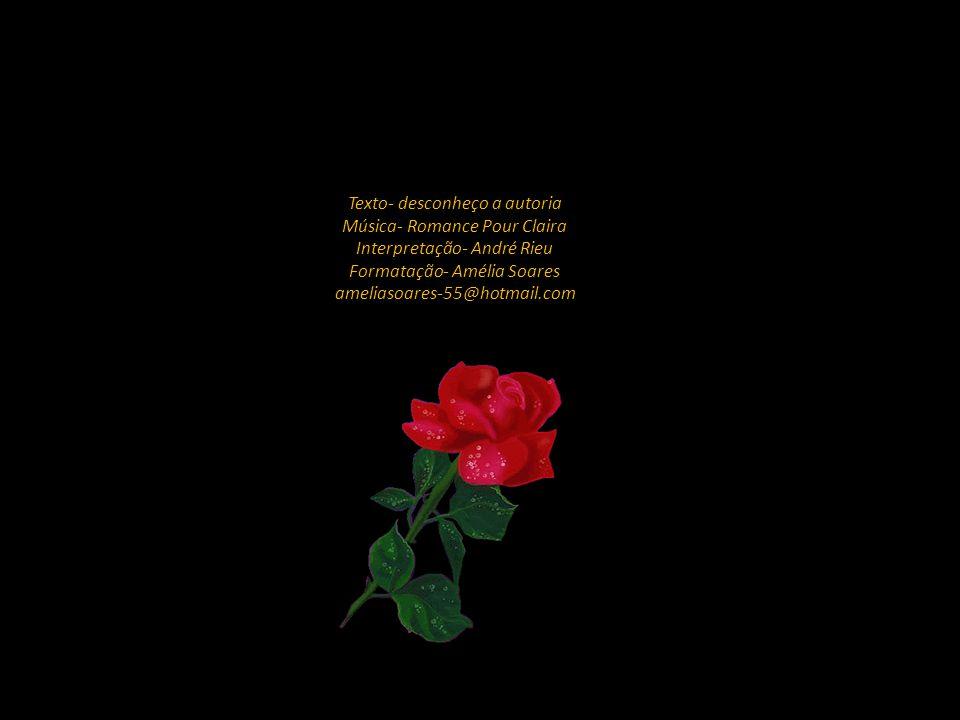 Texto- desconheço a autoria Música- Romance Pour Claira Interpretação- André Rieu Formatação- Amélia Soares ameliasoares-55@hotmail.com