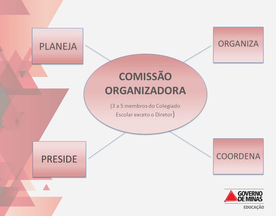 COMISSÃO ORGANIZADORA
