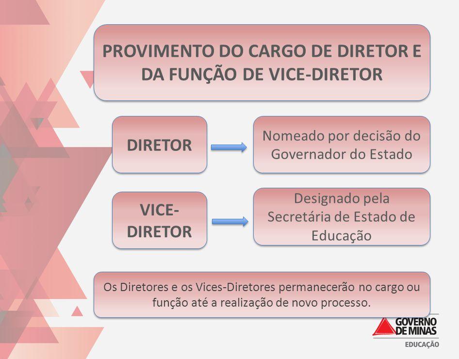 PROVIMENTO DO CARGO DE DIRETOR E DA FUNÇÃO DE VICE-DIRETOR