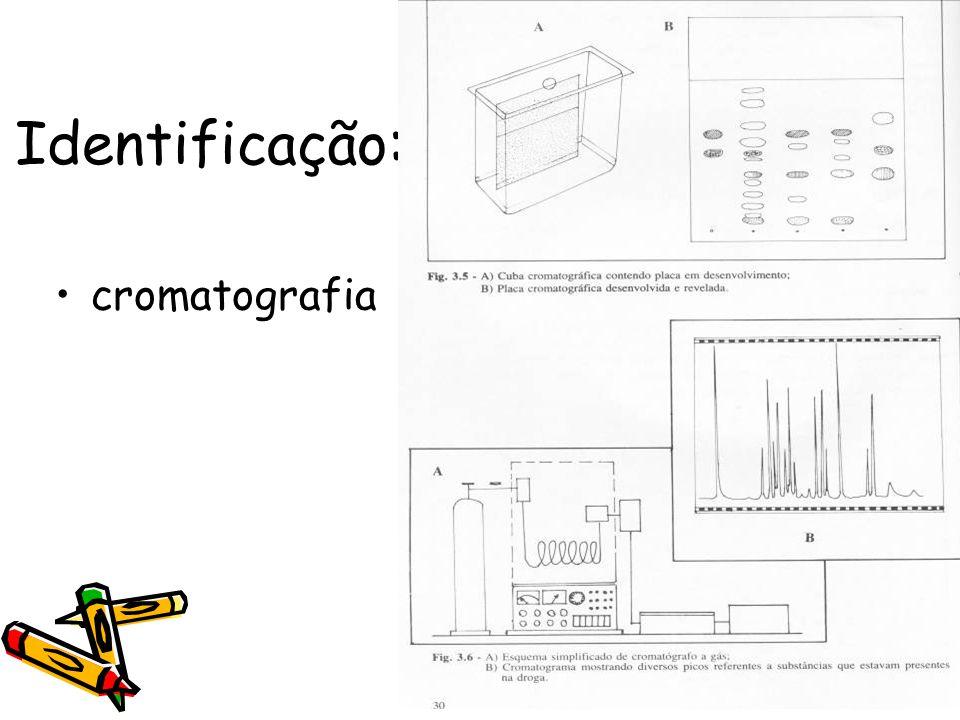 Identificação: cromatografia