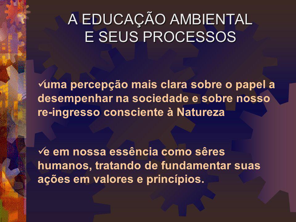 A EDUCAÇÃO AMBIENTAL E SEUS PROCESSOS