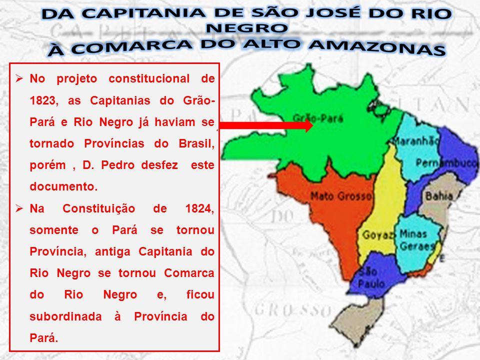 Da capitania de São José do Rio Negro à Comarca do Alto Amazonas