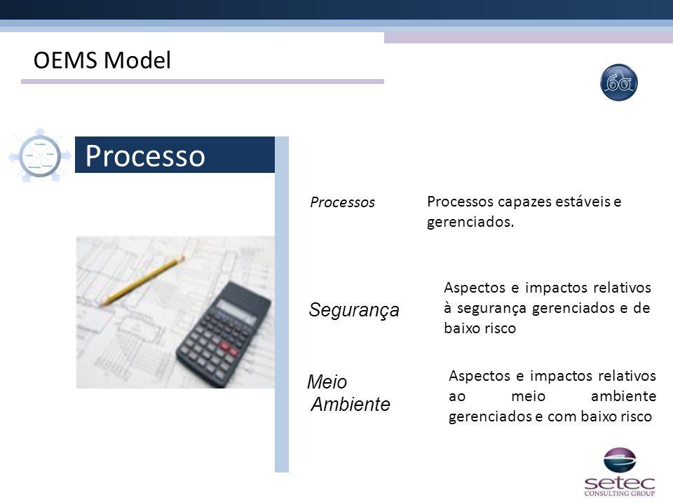 Processo OEMS Model Segurança Meio Ambiente Processos