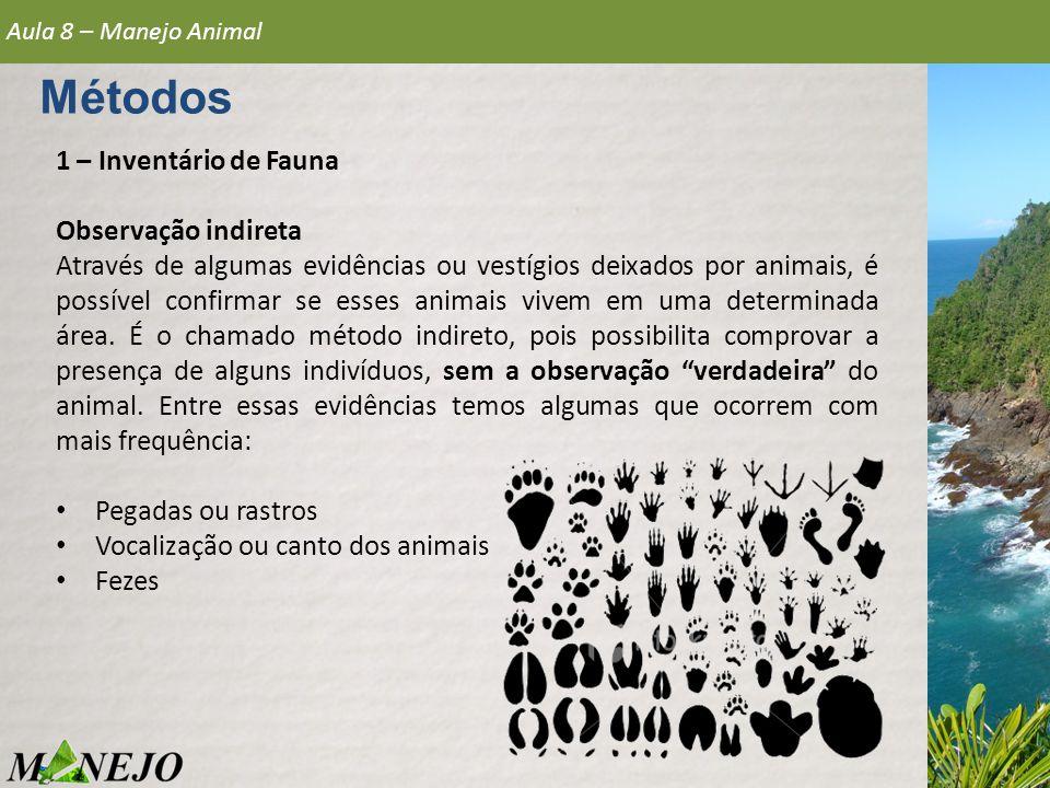 Métodos 1 – Inventário de Fauna Observação indireta