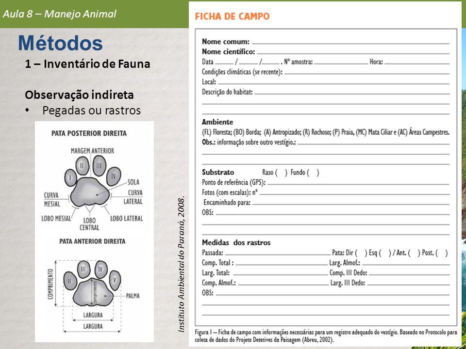 Métodos 1 – Inventário de Fauna Observação indireta Pegadas ou rastros