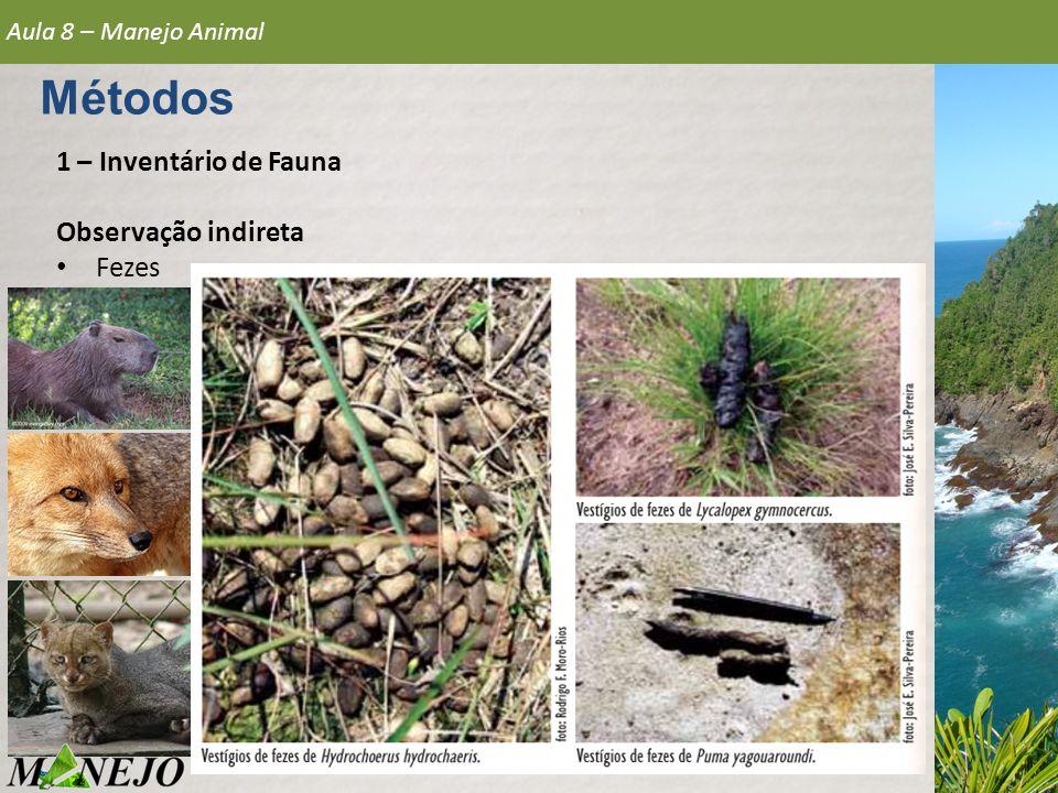 Métodos 1 – Inventário de Fauna Observação indireta Fezes