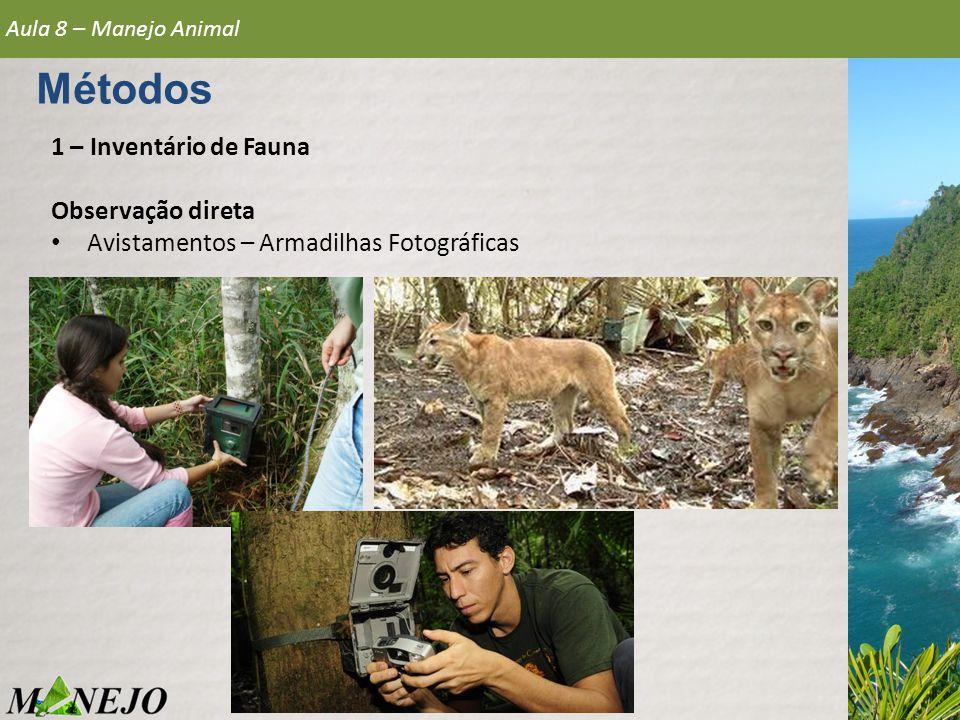 Métodos 1 – Inventário de Fauna Observação direta