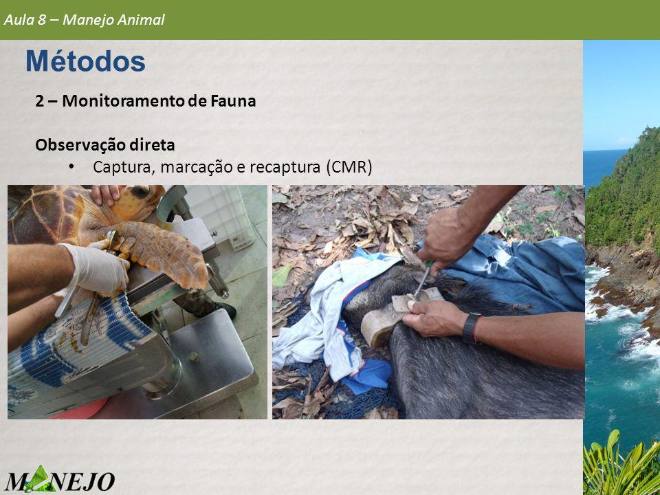 Métodos 2 – Monitoramento de Fauna Observação direta