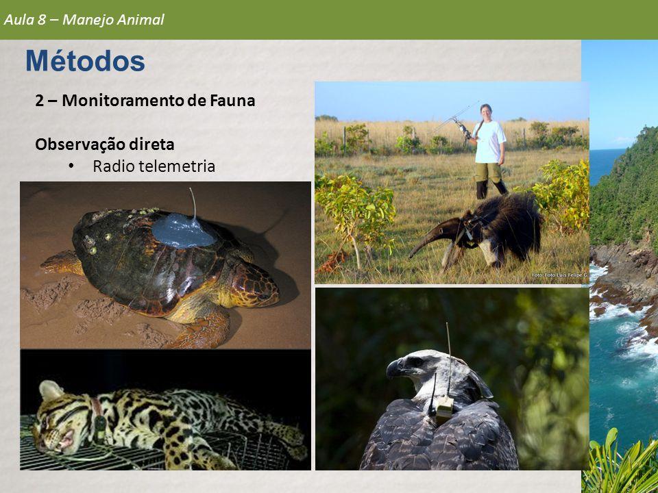 Métodos 2 – Monitoramento de Fauna Observação direta Radio telemetria