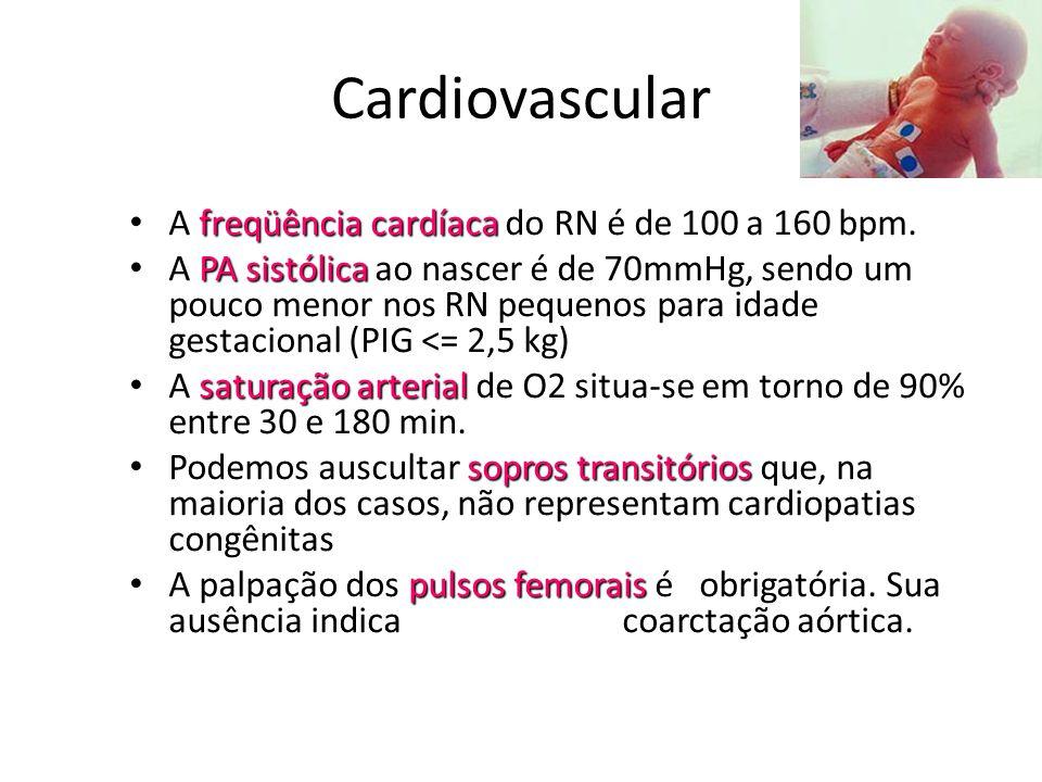 Cardiovascular A freqüência cardíaca do RN é de 100 a 160 bpm.