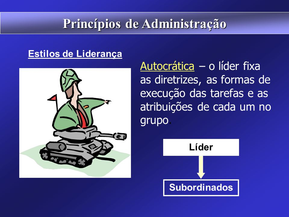 Princípios de Administração