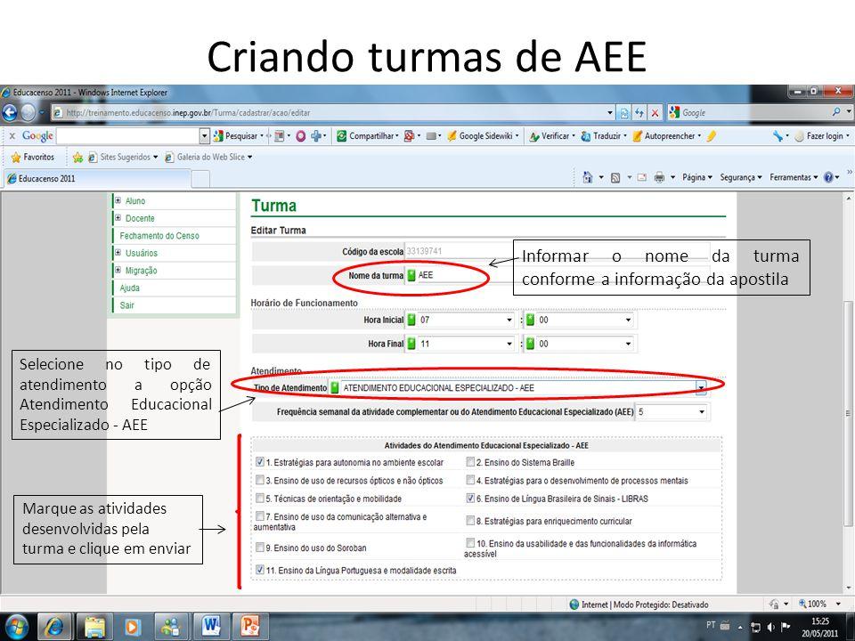 Criando turmas de AEE Informar o nome da turma conforme a informação da apostila.