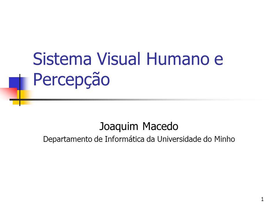 Sistema Visual Humano e Percepção