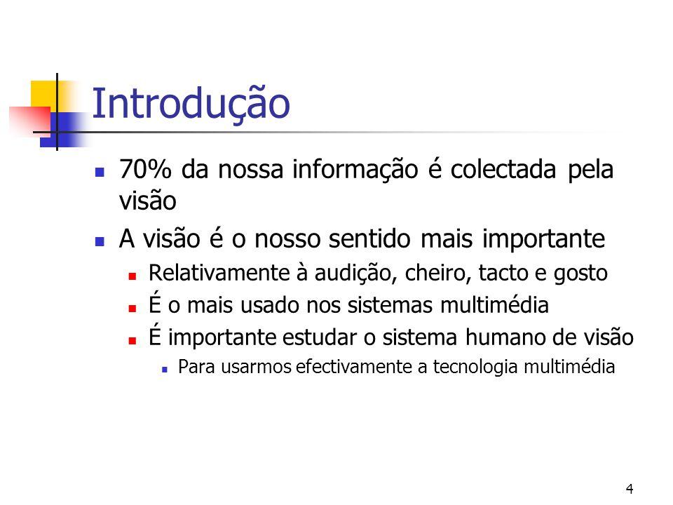 Introdução 70% da nossa informação é colectada pela visão