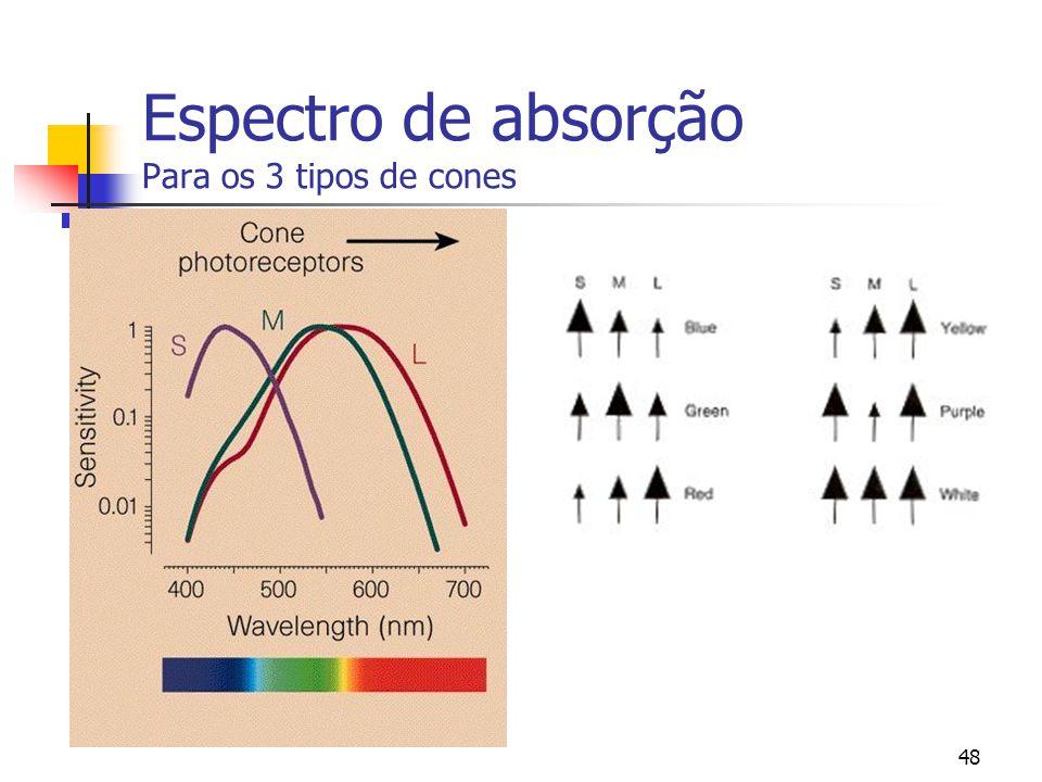 Espectro de absorção Para os 3 tipos de cones