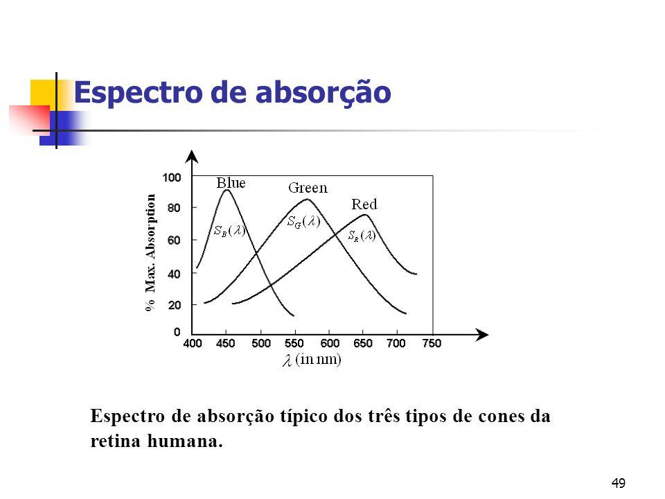 Espectro de absorção Espectro de absorção típico dos três tipos de cones da retina humana.