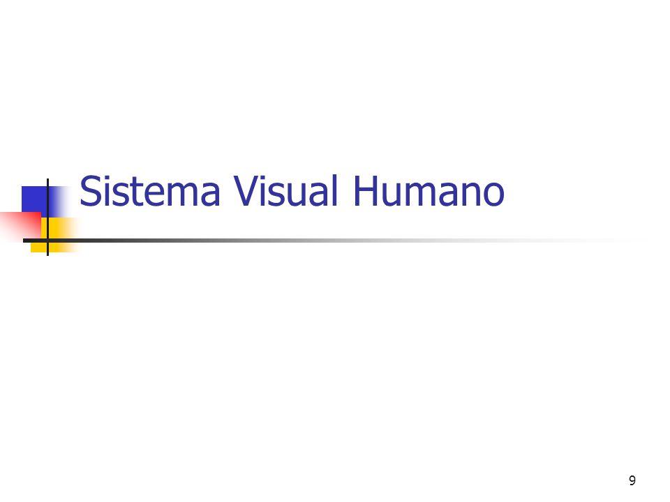 Sistema Visual Humano