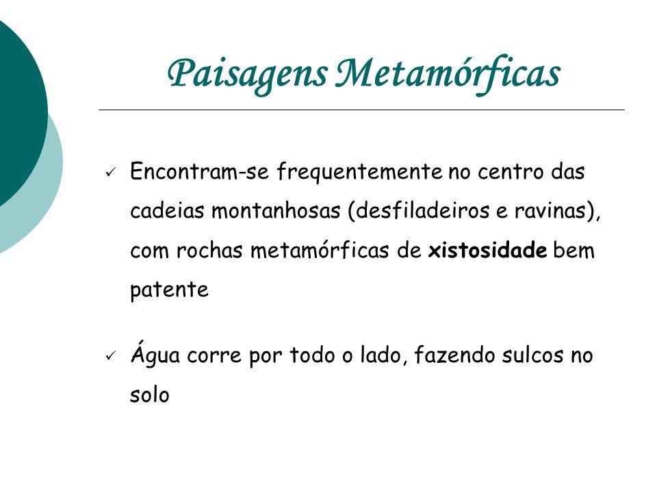 Paisagens Metamórficas