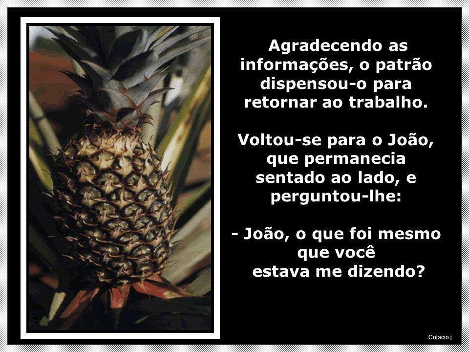 - João, o que foi mesmo que você