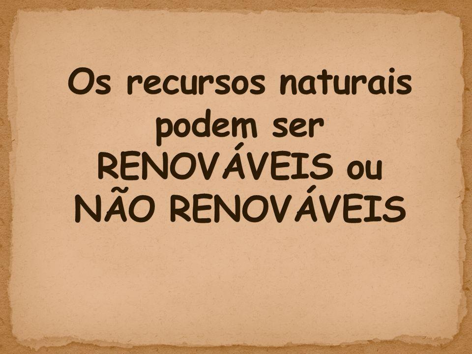 Os recursos naturais podem ser RENOVÁVEIS ou NÃO RENOVÁVEIS