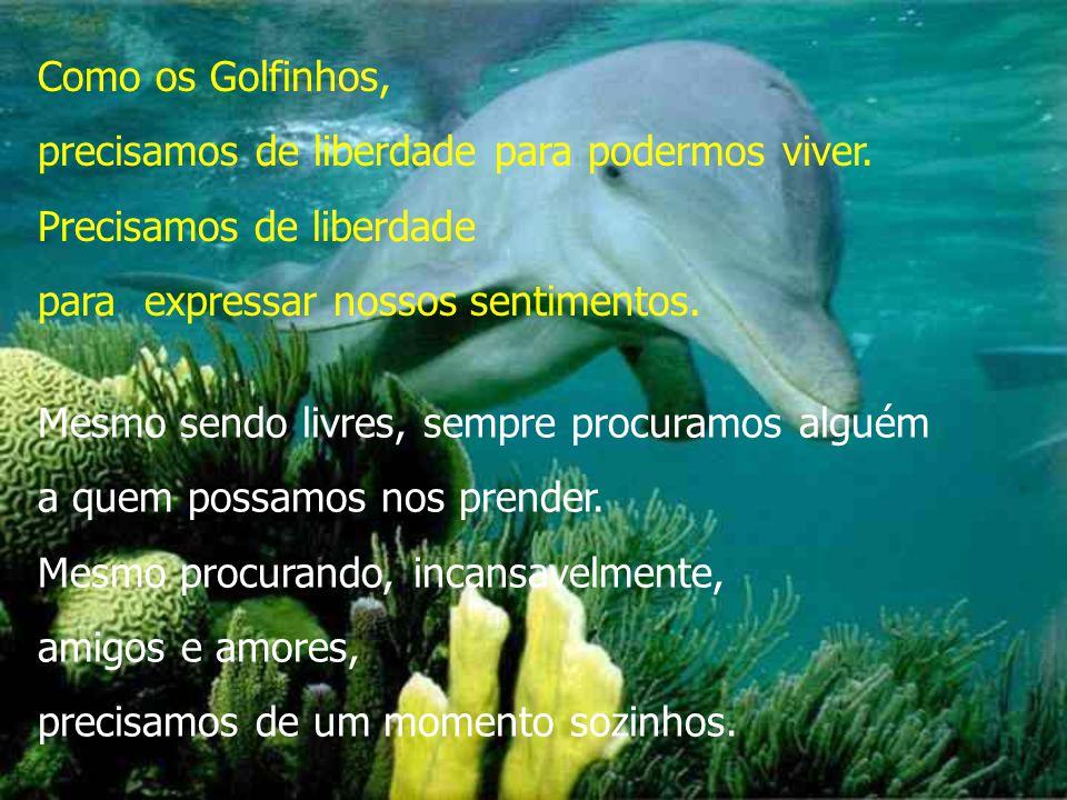 Como os Golfinhos, precisamos de liberdade para podermos viver. Precisamos de liberdade. para expressar nossos sentimentos.