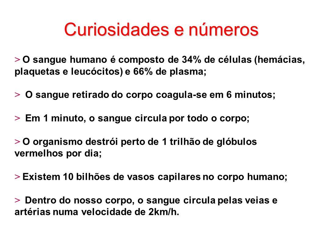 Curiosidades e números