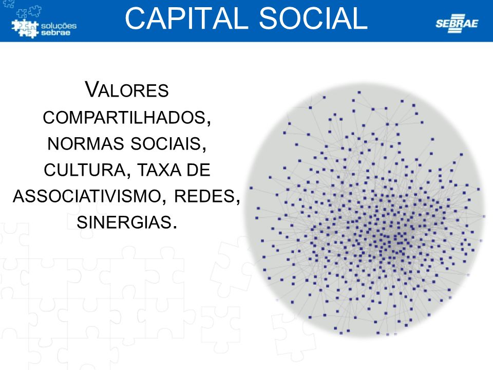 CAPITAL SOCIAL Valores compartilhados,