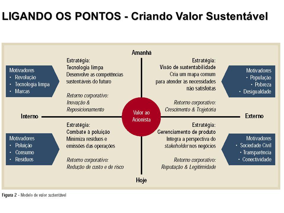 LIGANDO OS PONTOS - Criando Valor Sustentável