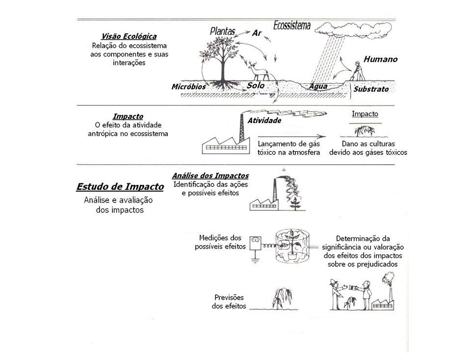 Figura 2 – Impactos Ambientais. Fonte: Westman,1985
