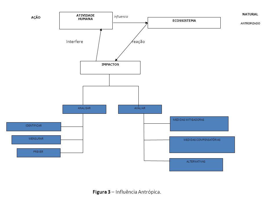 Figura 3 – Influência Antrópica.