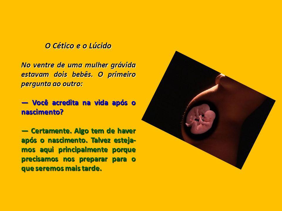 O Cético e o Lúcido No ventre de uma mulher grávida estavam dois bebês. O primeiro pergunta ao outro: