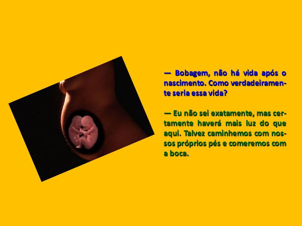 — Bobagem, não há vida após o nascimento