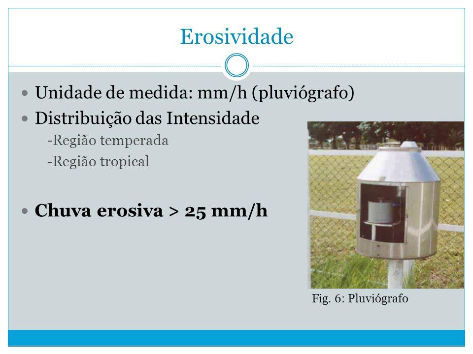 Erosividade Unidade de medida: mm/h (pluviógrafo)