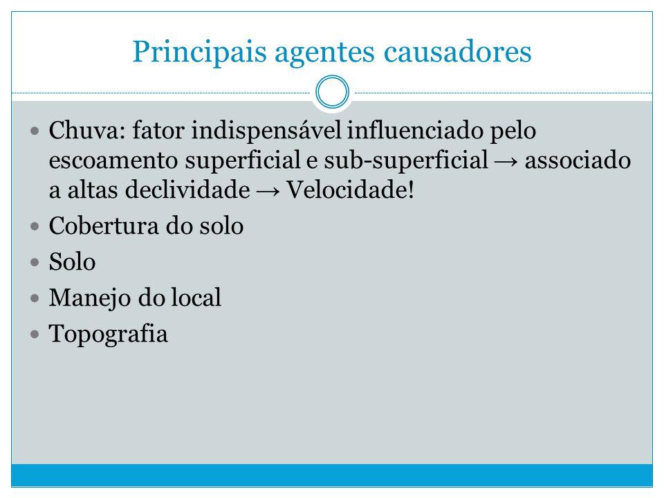 Principais agentes causadores