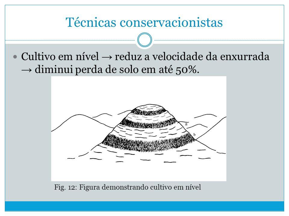 Técnicas conservacionistas