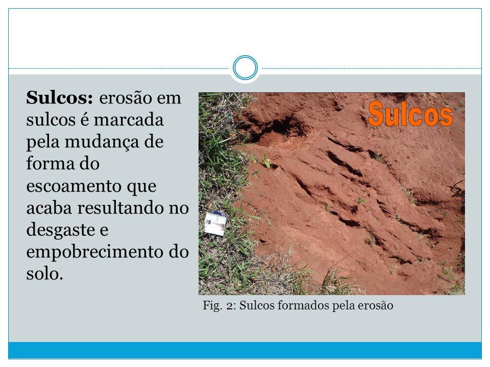 Sulcos: erosão em sulcos é marcada pela mudança de forma do escoamento que acaba resultando no desgaste e empobrecimento do solo.