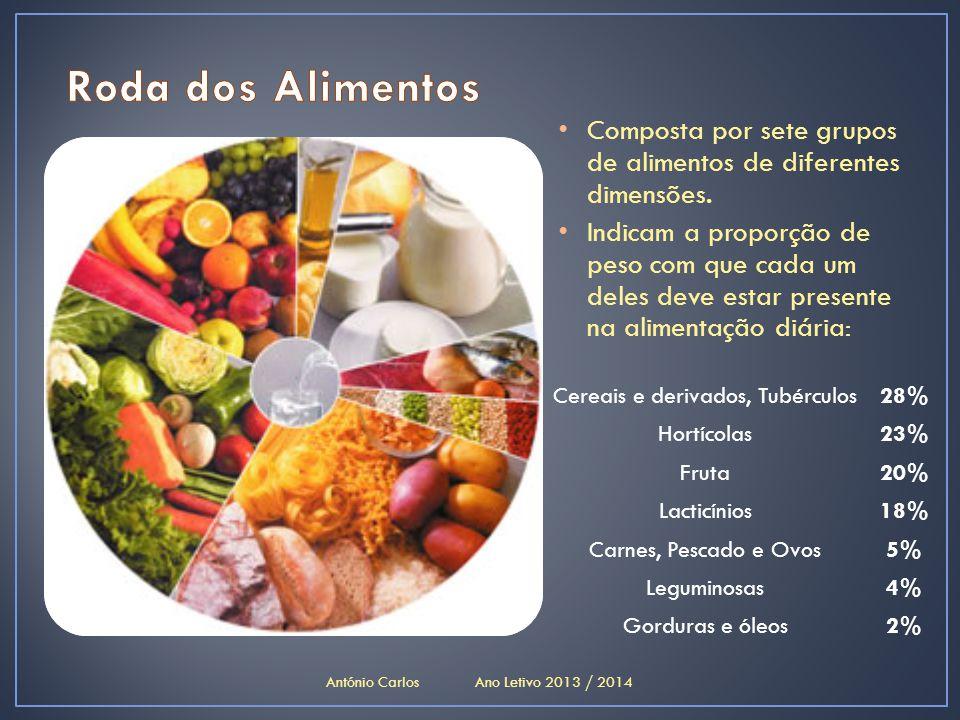 Roda dos Alimentos Composta por sete grupos de alimentos de diferentes dimensões.