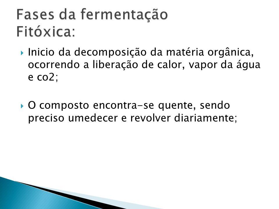 Fases da fermentação Fitóxica: