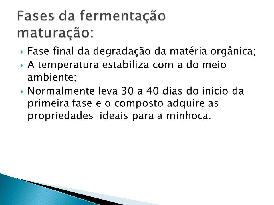 Fases da fermentação maturação: