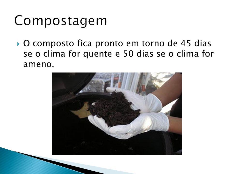 Compostagem O composto fica pronto em torno de 45 dias se o clima for quente e 50 dias se o clima for ameno.