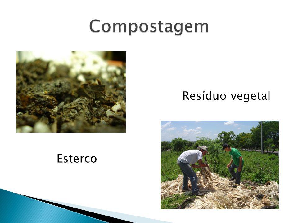 Compostagem Resíduo vegetal Esterco