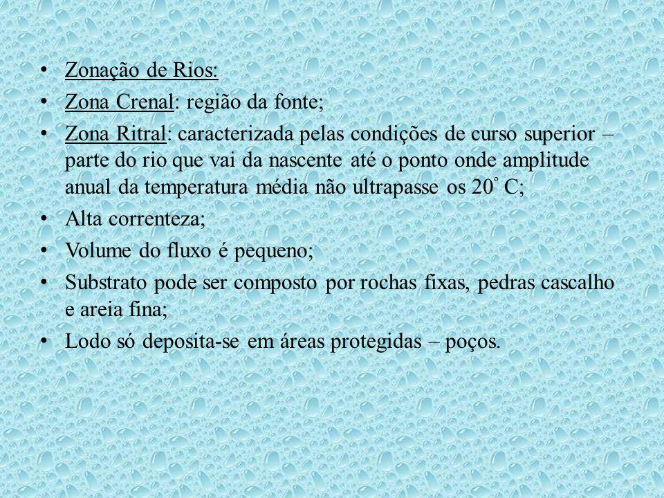 Zonação de Rios: Zona Crenal: região da fonte;