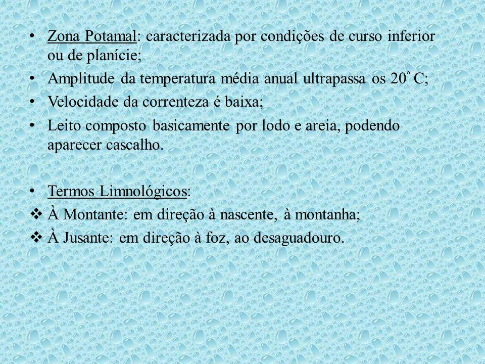 Zona Potamal: caracterizada por condições de curso inferior ou de planície;