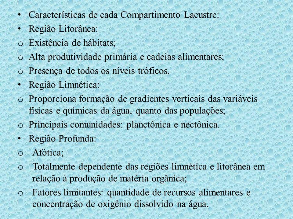 Características de cada Compartimento Lacustre: