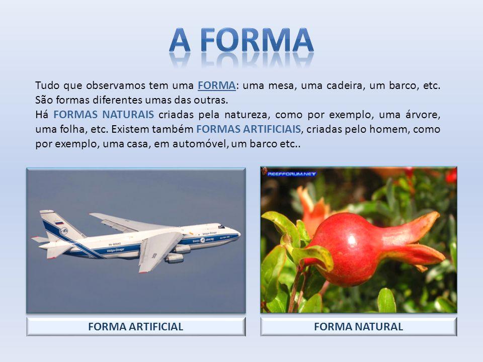 A forma Tudo que observamos tem uma FORMA: uma mesa, uma cadeira, um barco, etc. São formas diferentes umas das outras.