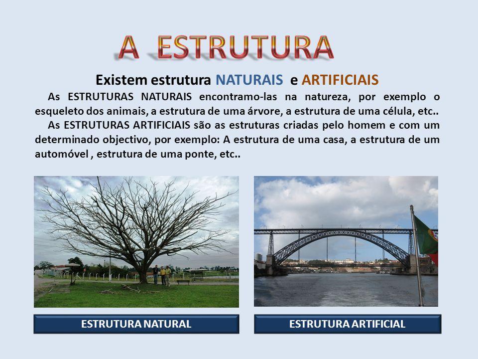 Existem estrutura NATURAIS e ARTIFICIAIS