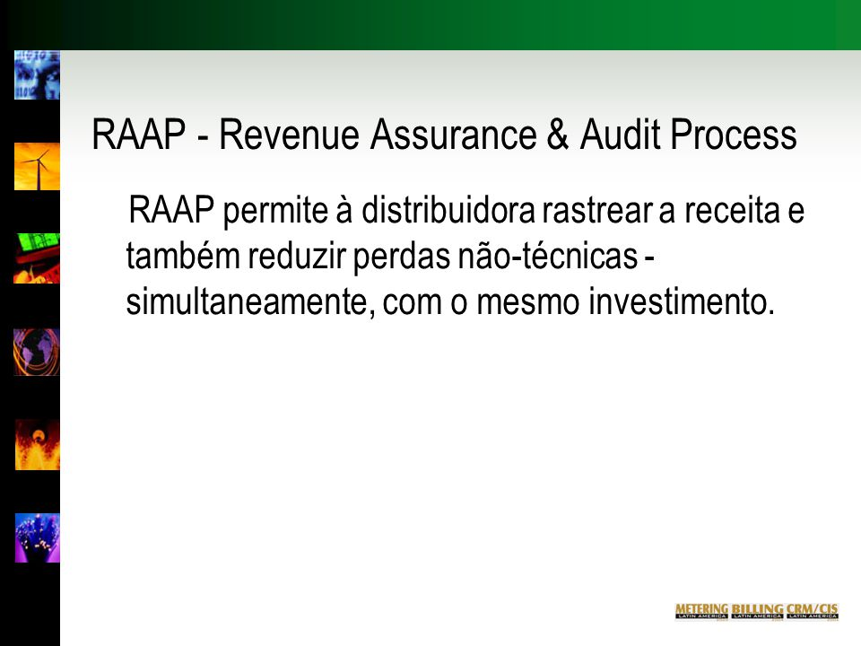 RAAP - Revenue Assurance & Audit Process